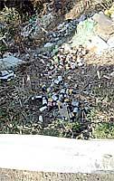 道路脇の崖に不法投棄された空き瓶や空き缶