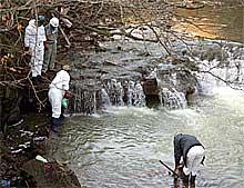 宮田川で重油除去作業を行う日本鉱業関係者