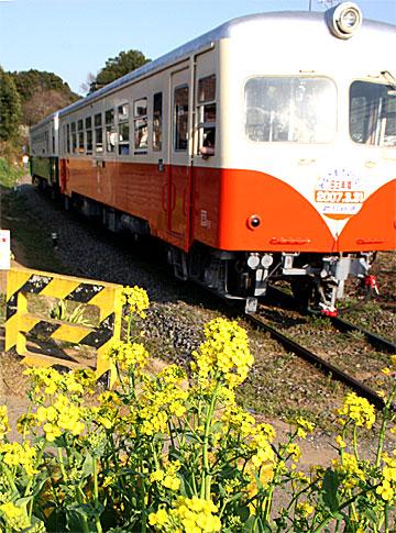 鹿島鉄道キハ430型