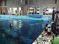 海洋高校の潜水プール